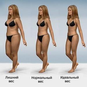 Нормальный вес