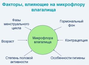 Факторы, которые влияют на микрофлору